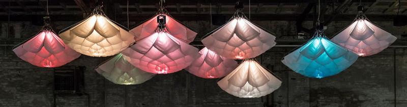Расцветающий свет от голландских дизайнеров