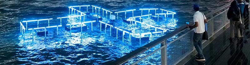 Светодиодная установка + POOL освещает проблемы экологии