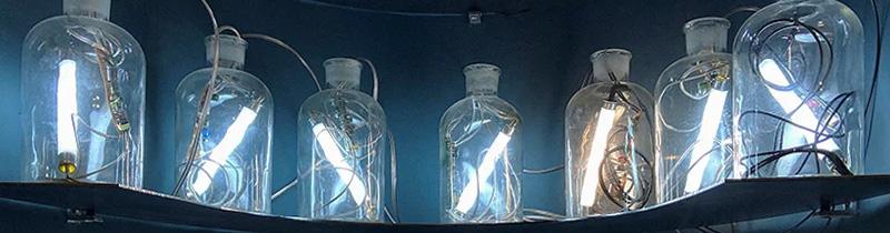 Светильники в склянках: инсталляция в институте Гете